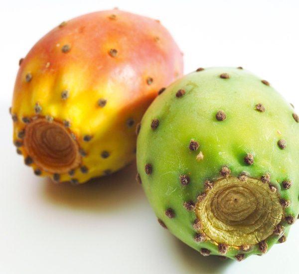 Kaktüs Meyvesinin Sağlık İçin Kanıtlanmış 21 Faydası